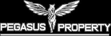 pegasus_light_logo_X70